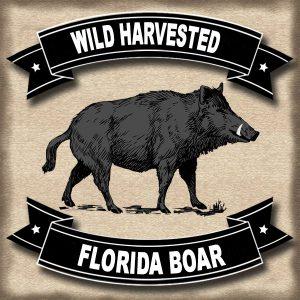 Wild Harvested Florida Boar