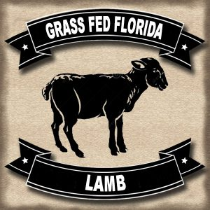 Grass Fed Florida Lamb